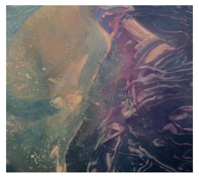 Pintura de la artista Nicole Tijoux.